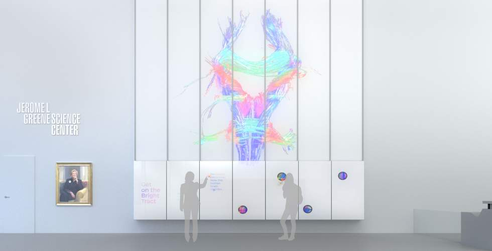 The Brain Index in interactive mode.